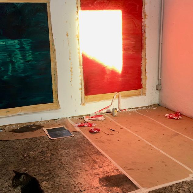 studio with cat