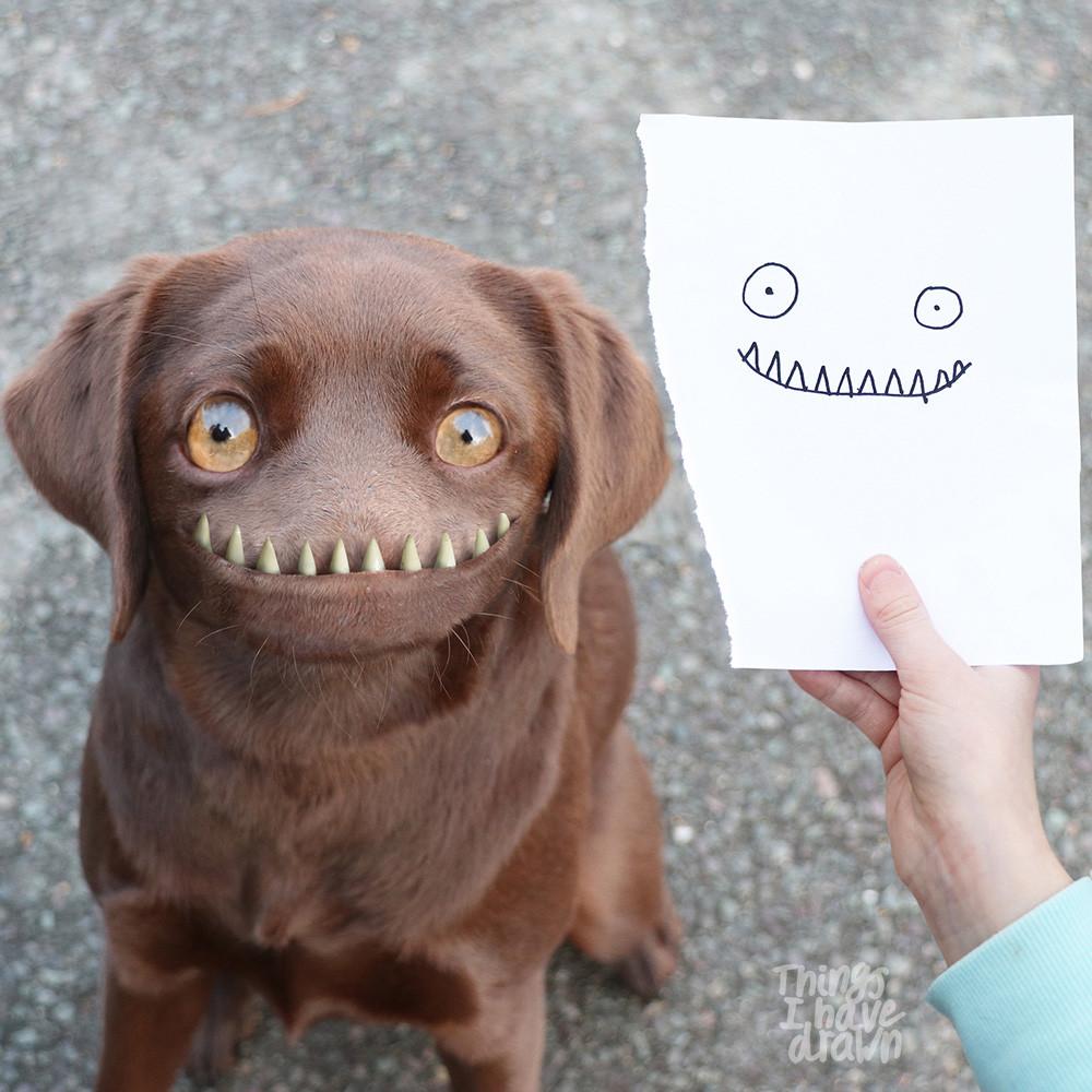 Mia the Dog by Tia