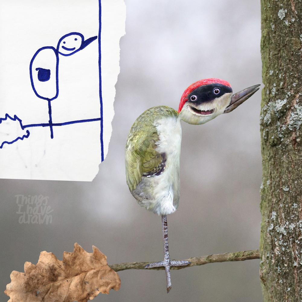 Woodpecker by Al