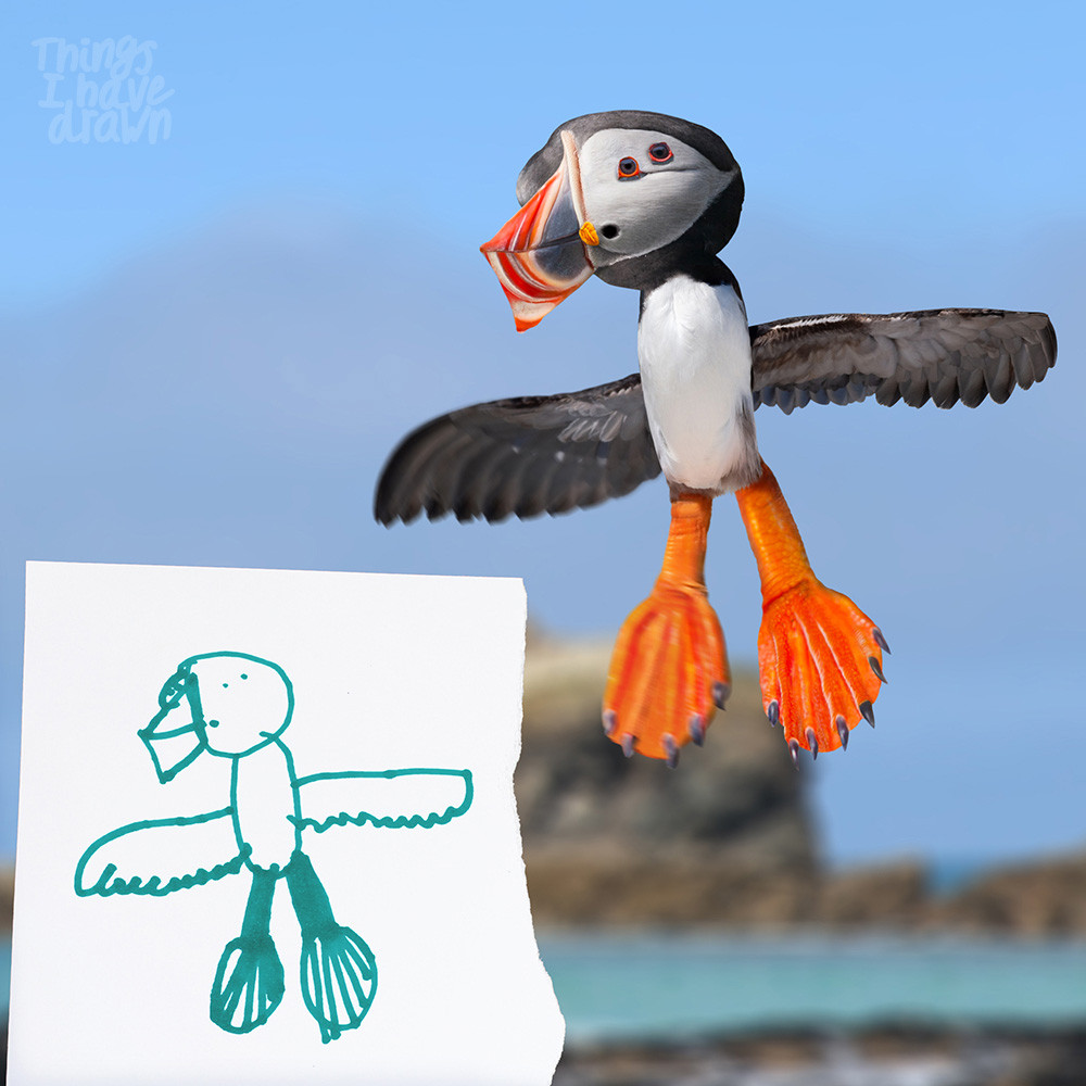 Puffin by Byron