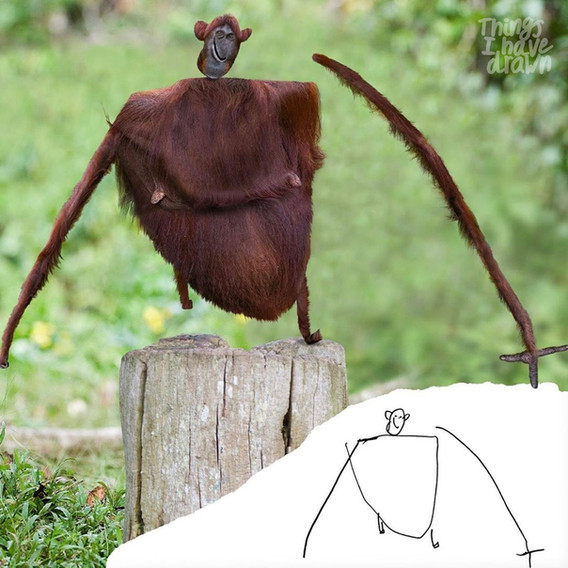www-orangutan.jpg