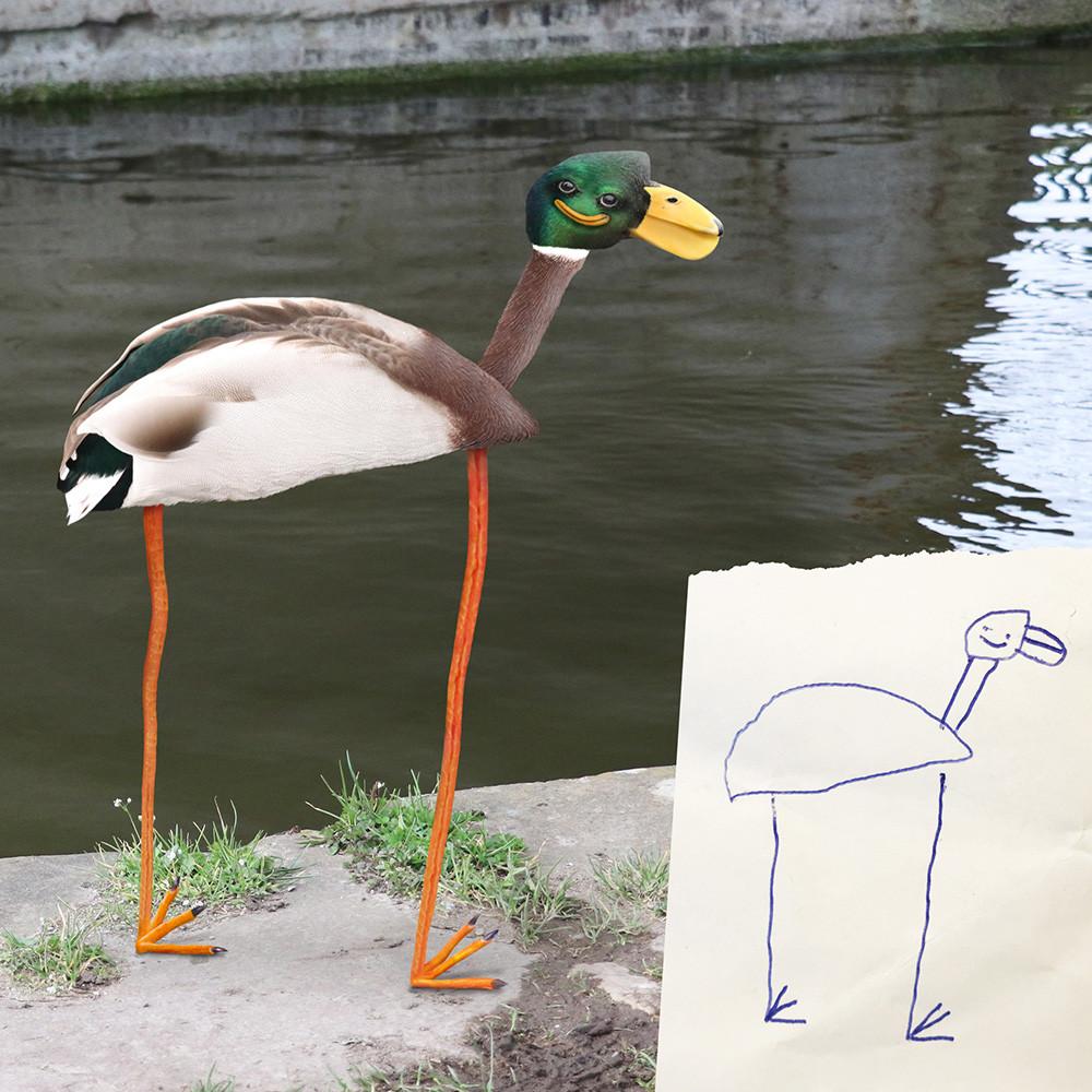 Duck by Al
