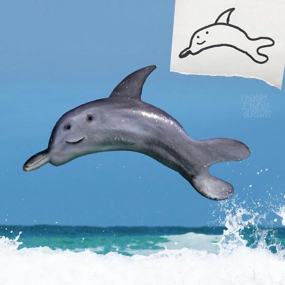 Dolphin by Al