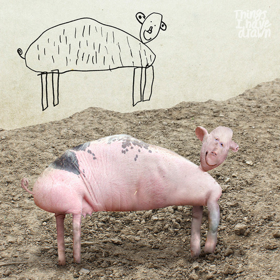Pig by Dom