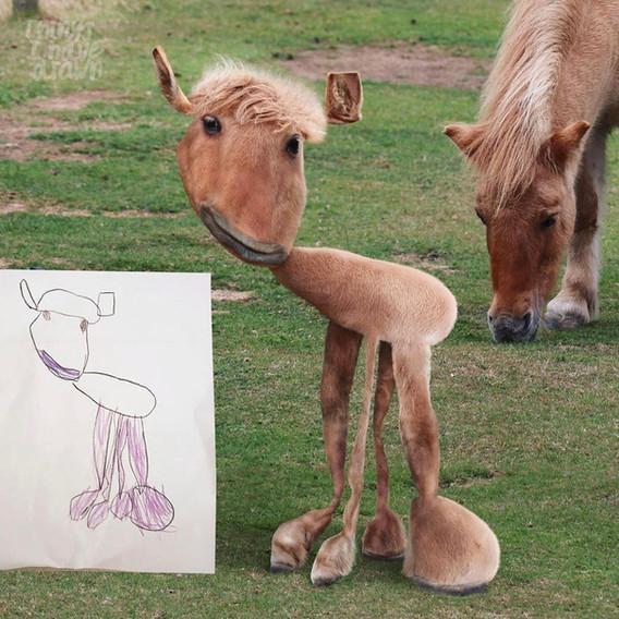 Shetland Pony by Facundo
