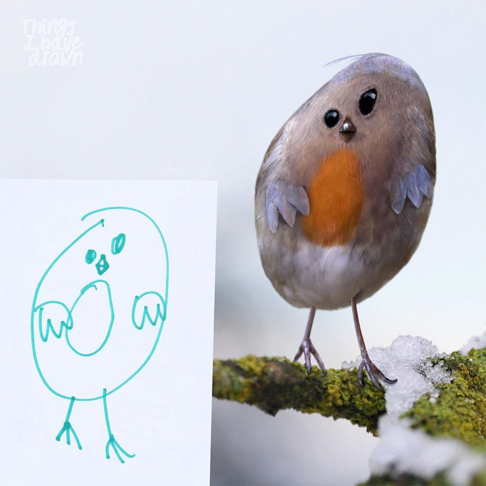 Robin by Beatrice