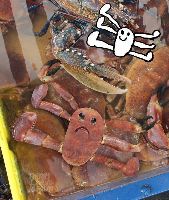 Crab by Dom