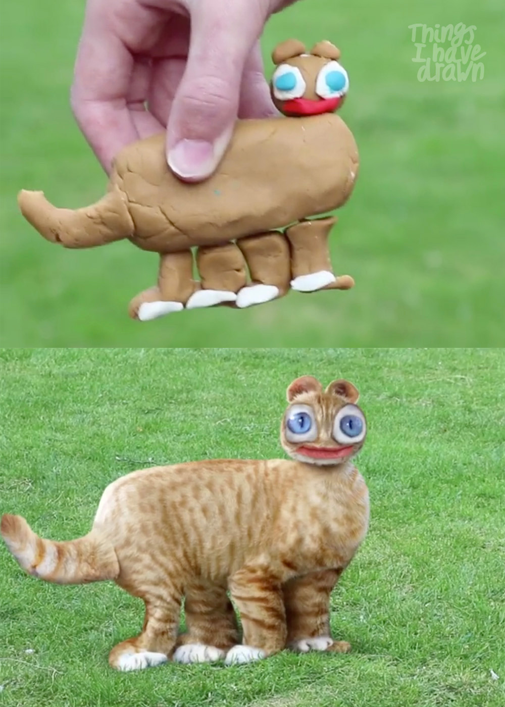 Play-Doh Cat