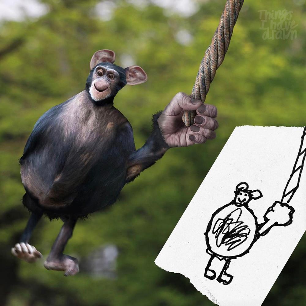 Baby Chimp by Al