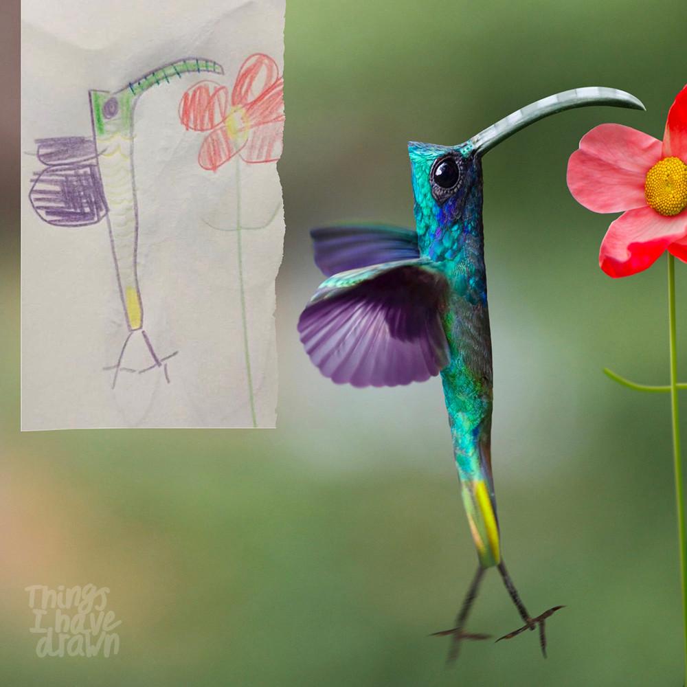 Hummingbird by Signe