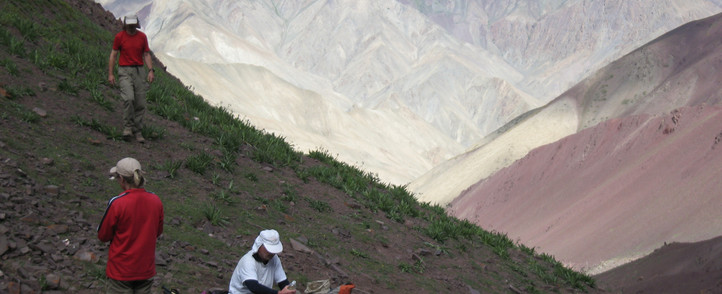 Indien_Stok KangriSnowlion expeditions india 4.JPG
