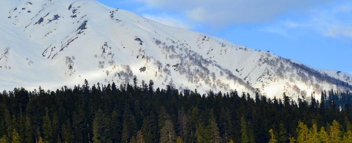 snow-3971863.jpg