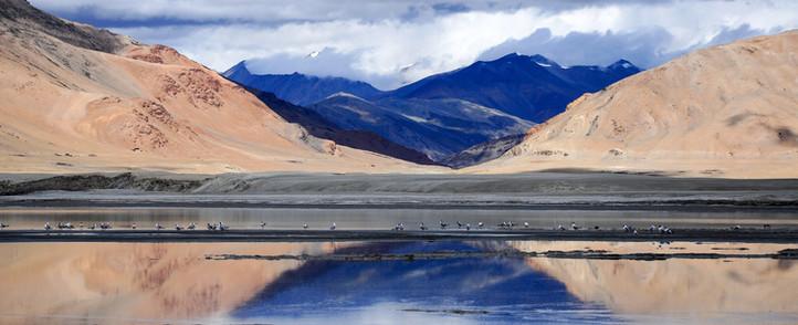 Tsokar Lake snowlion expeditions cycling