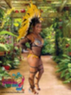 NUGUYA tropical background ss INDE JUNCT