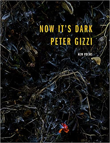 Now It's Dark, by Peter Gizzi