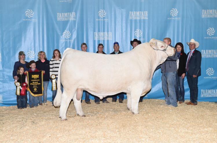 Farm Fair Grand Champion