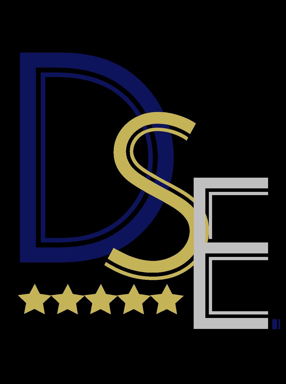 DSE Logo Final
