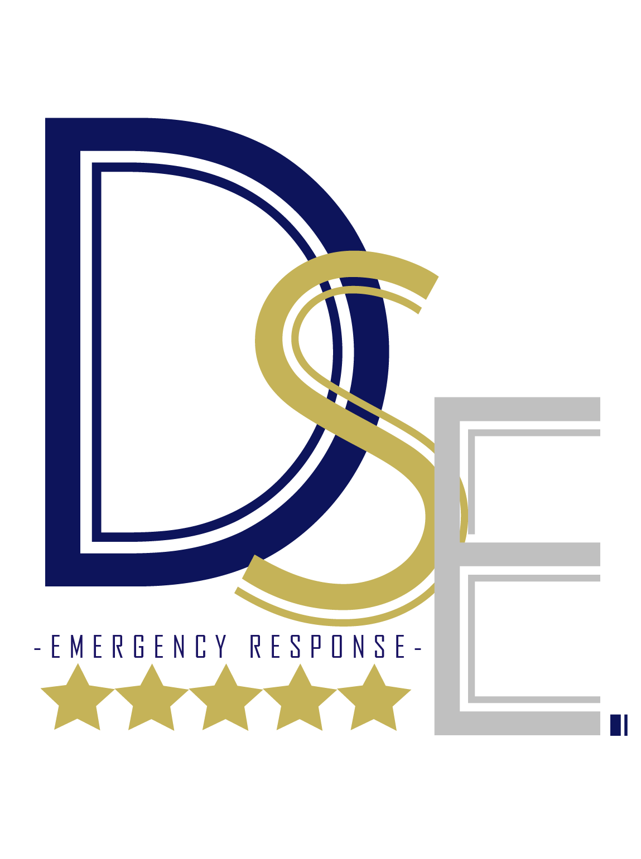 DSE Emergency Response Logo
