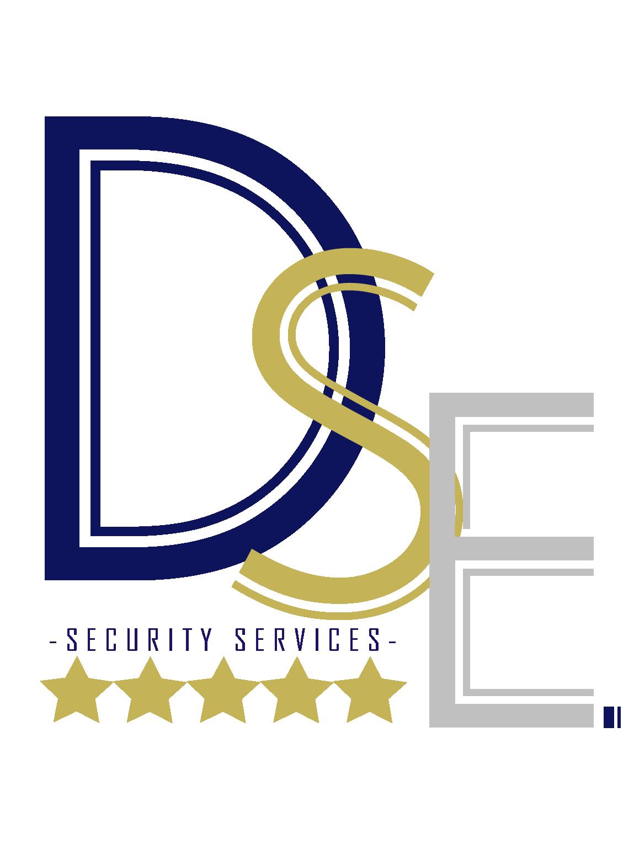 DSE SECURITY LOGO
