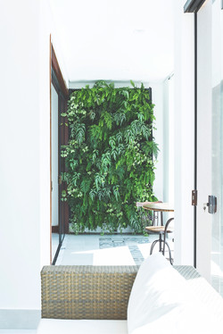 Jardim-vertical-mondo2