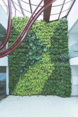 Jardim-vertical-mondo15