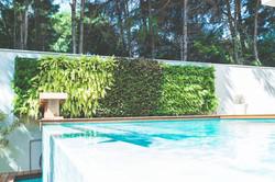 Jardim-vertical-mondo5