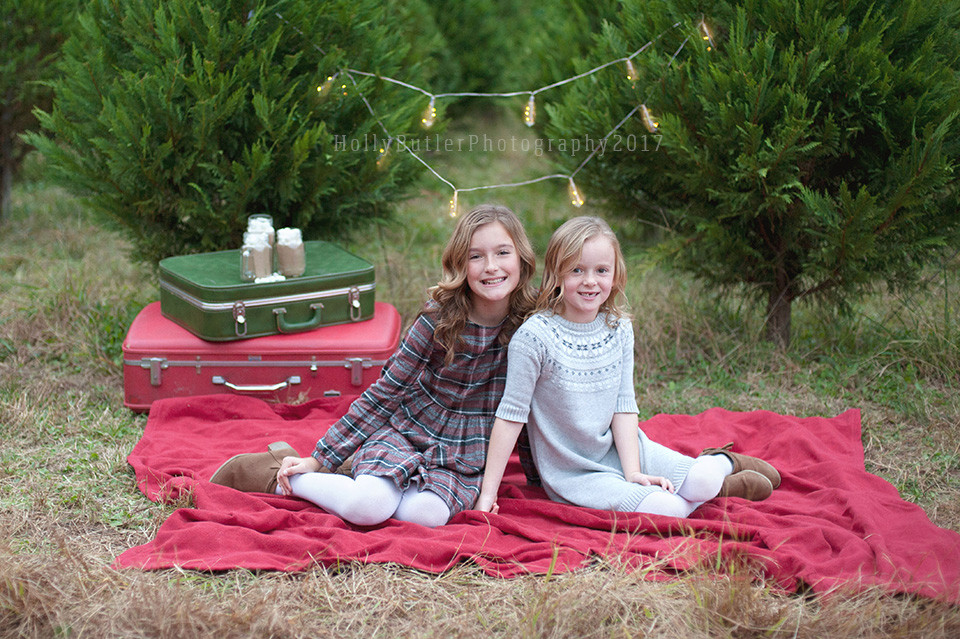 Tree Farm Christmas Sessions | Holly Butler Photography