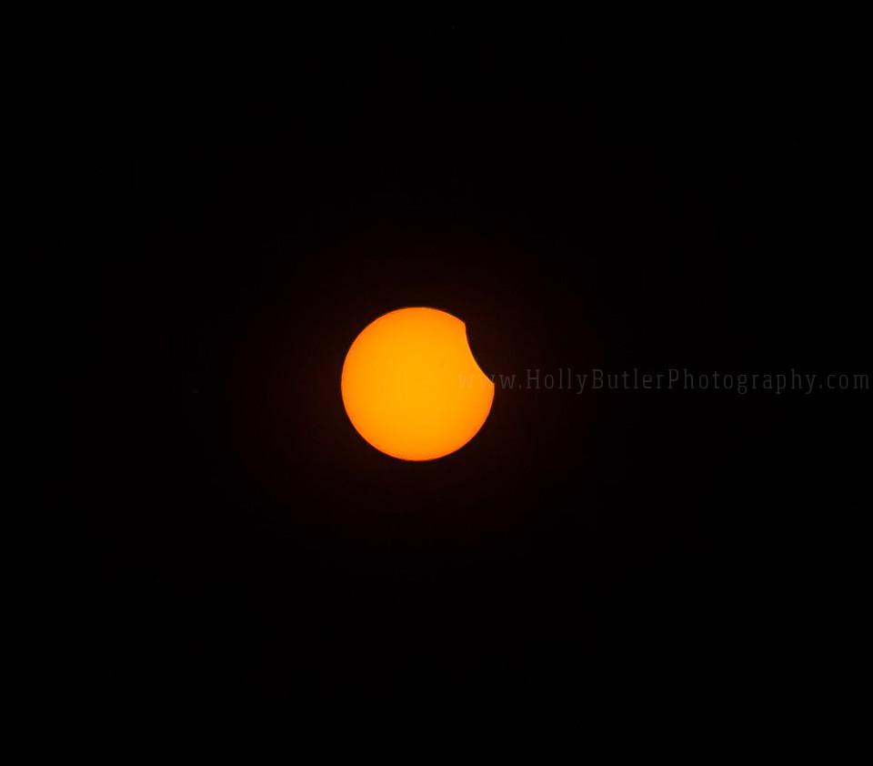 Solar Eclipse Poquoson, Va | Holly Butler Photography