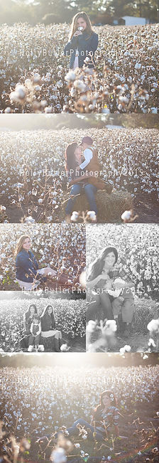 Photo session in a cotton field | family sesson ideas | holly buter photography