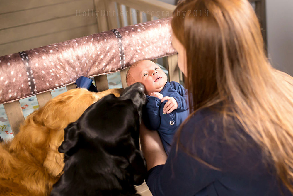Holly Butler Photography | Lifestyle Newborn