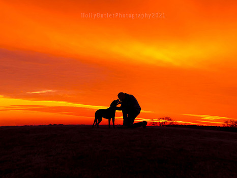 Doggy + Family + Silhouettes