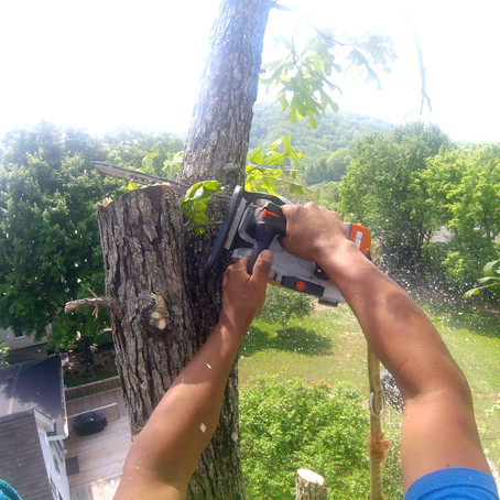 #TuesdayTip, Avoid Chainsaw Mid-Cut Stucks