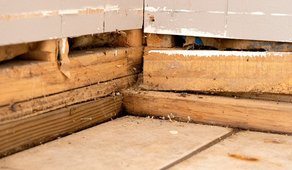 Untreated wood absorbs moisture over time.