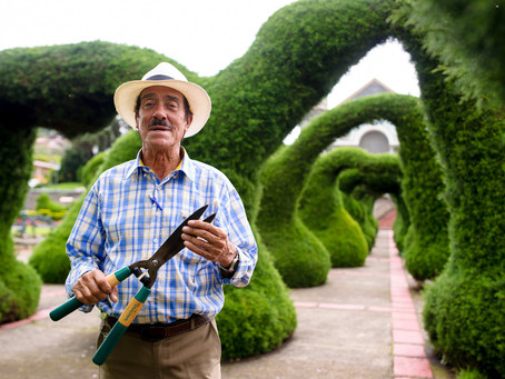 Zarcero Topiary Gardens: Costa Rica's Most Charming Town