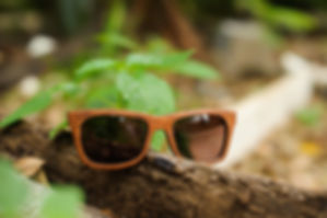 Best Costa Rica Photographer Reviews Tamarindo photographer testimonials, family beach photos Costa Rica
