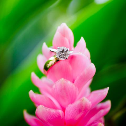 Ring shot on tropical flowers at Costa Rica wedding at Cala Luna, Langosta Beach.