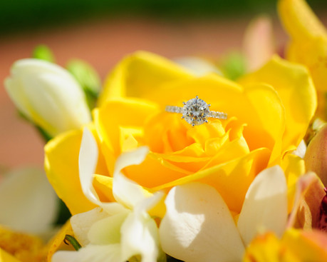 Engagement ring on flowers in Costa Rica