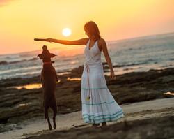 Dog Photos Pet Photographer