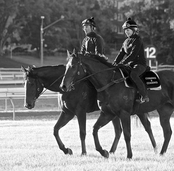 Jean de Mieulle, Entraineur de chevaux de courses, JeandeMieulle-Racing.com, Morannes, France