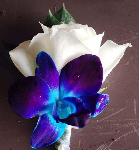 A blue buttonhole