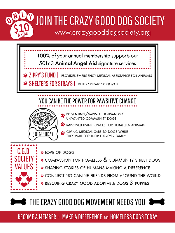 CGDS-flyer-July2019.png