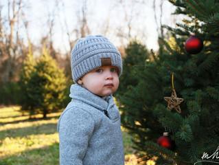 Christmas Photos at Prettyboy Run Farm