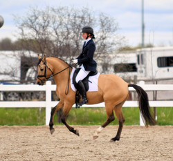 Canter w-up