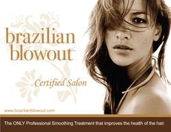 brazilian-1024x791-1