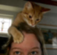 Foster cat on woman's head