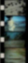 antefilm4.jpg