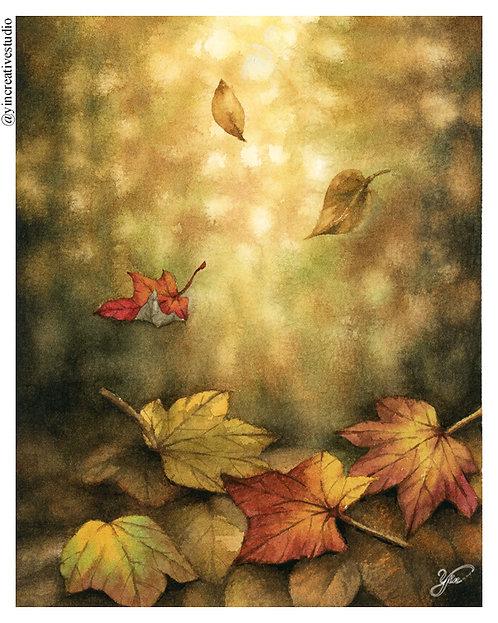 Maple Leaves- Sunset