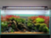 1kG_-REA4iM 😍_————————————_#gaoncompany