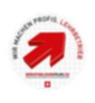 logo_wir_machen_profis_farbe.png