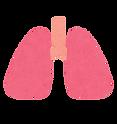 加齢による呼吸器の変化|西山動物病院|流山市・松戸市・柏市・野田市